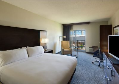 One King Bed room in the DoubleTree by Hilton Port Huron